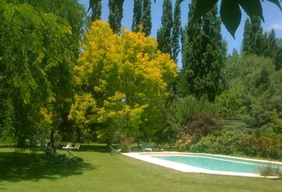 buildblog-casa-glebinias-pool