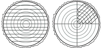 spd-sawn-lumber-diagrams